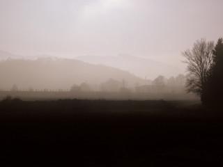 matin hivernal (3)