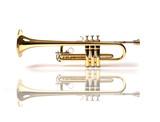 trumpet - trompette - trompete poster
