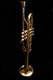 trumpet - trompete - trompette poster