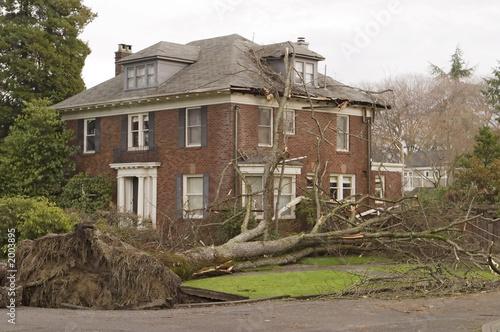 Leinwandbild Motiv house with tree damage