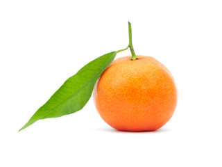 tangerine with green leaf