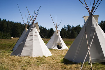 teepee camp in meadow