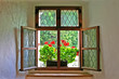 window with wooden frame and flowers