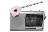 blooming radio poster