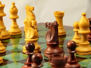 cavalli da scacchi