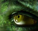 ojo verde poster