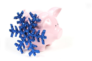 pink piggy bank with snowflake