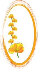 orange oval ornament - vector illustration