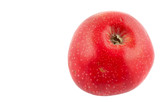 tasty  red apple - pure white background poster