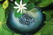 Leinwandbild Motiv perles noires