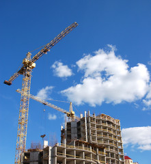 cranes and building