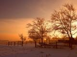warm winter sunset poster