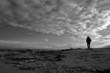 roleta: loneliness