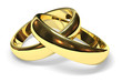 wedding rings - 2098251