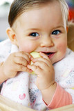 small baby eating apple poster
