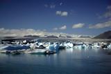 hundreds of icebergs poster
