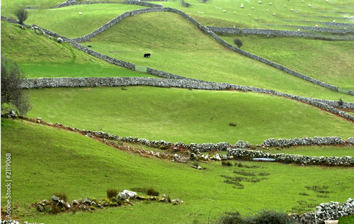 ireland farmland