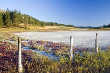 dry alkaline lake bed #2