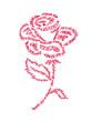 rose fête des mères