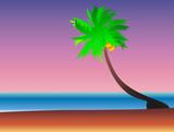 beachside witrh coconut tree poster