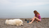 girl and samoyed on the seaside poster