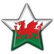bottone stella gallese - wales button star flag