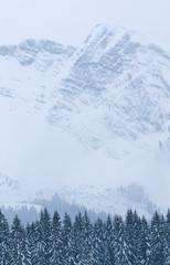 neige090