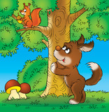 dog and squirrel poster