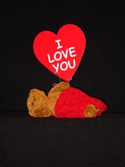 valentine love bear