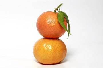 frutit color