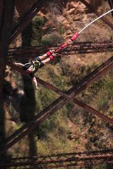 bungee jumper #3