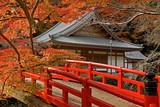 autumn temple-