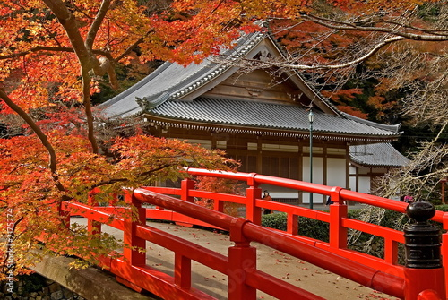 autumn temple