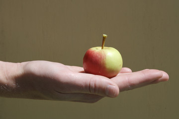 apple in palm of hand
