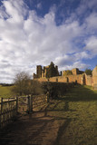 kenilworth castle, warwickshire, the midlands, eng poster