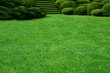 garden - 2183205