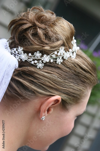 Poster hair up do blond brown veil pulled back formal