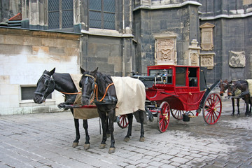 horses and horse coach