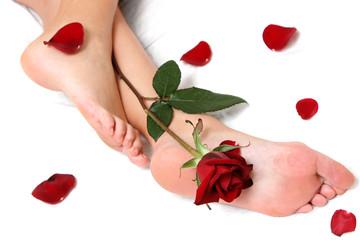 pies y rosas