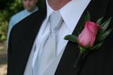 tux pink rose boutinerre wedding groom poster