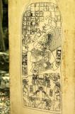 maya glyphs poster