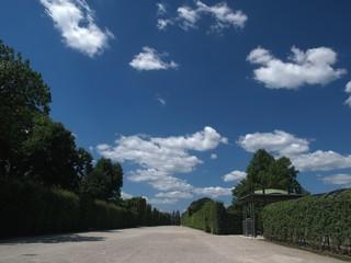 loneliness in schönbrunn gardens