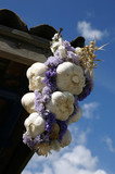 bouquet of garlic