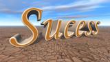 success 3d render poster