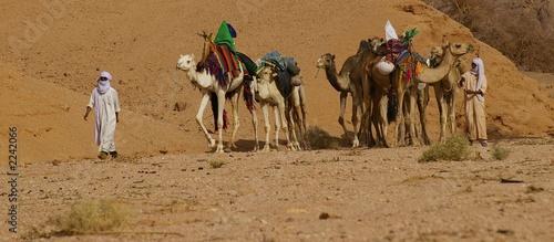 Fotobehang Algerije retour des touaregs au campement
