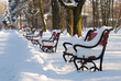 red benches in the park covered with snow