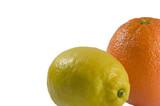 lemon and orange right frame poster