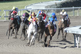 racehorses in the turn 2 poster