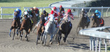 racehorses in the turn 9 poster