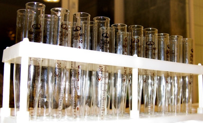 test tubes in the laboratory in holder